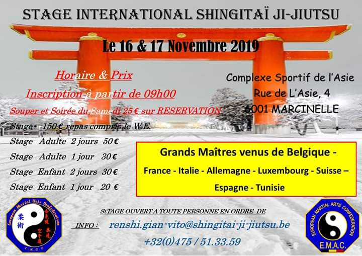 Stage International D'Art Martiaux Multi Discipline