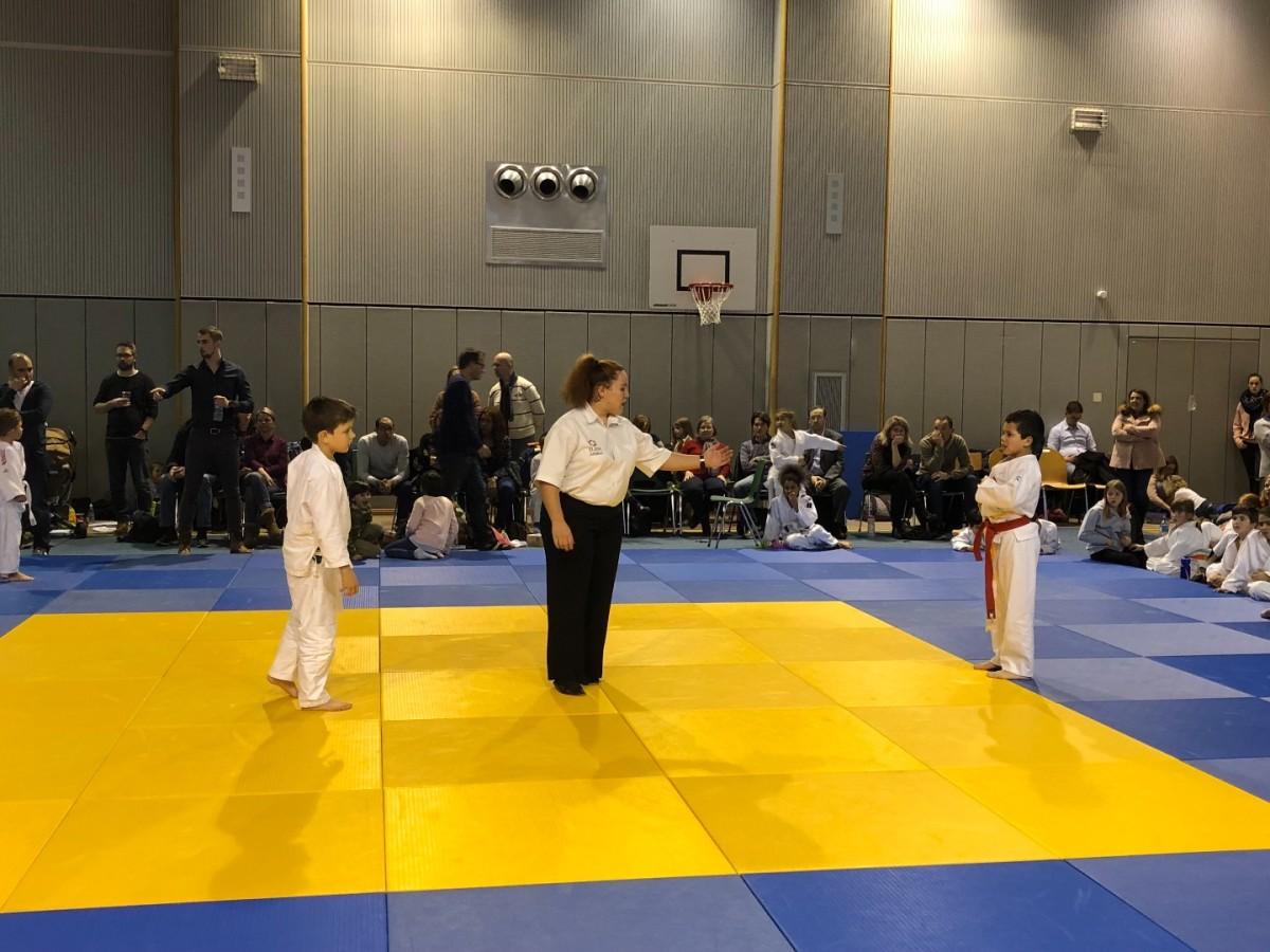 Mini-Judo 2018