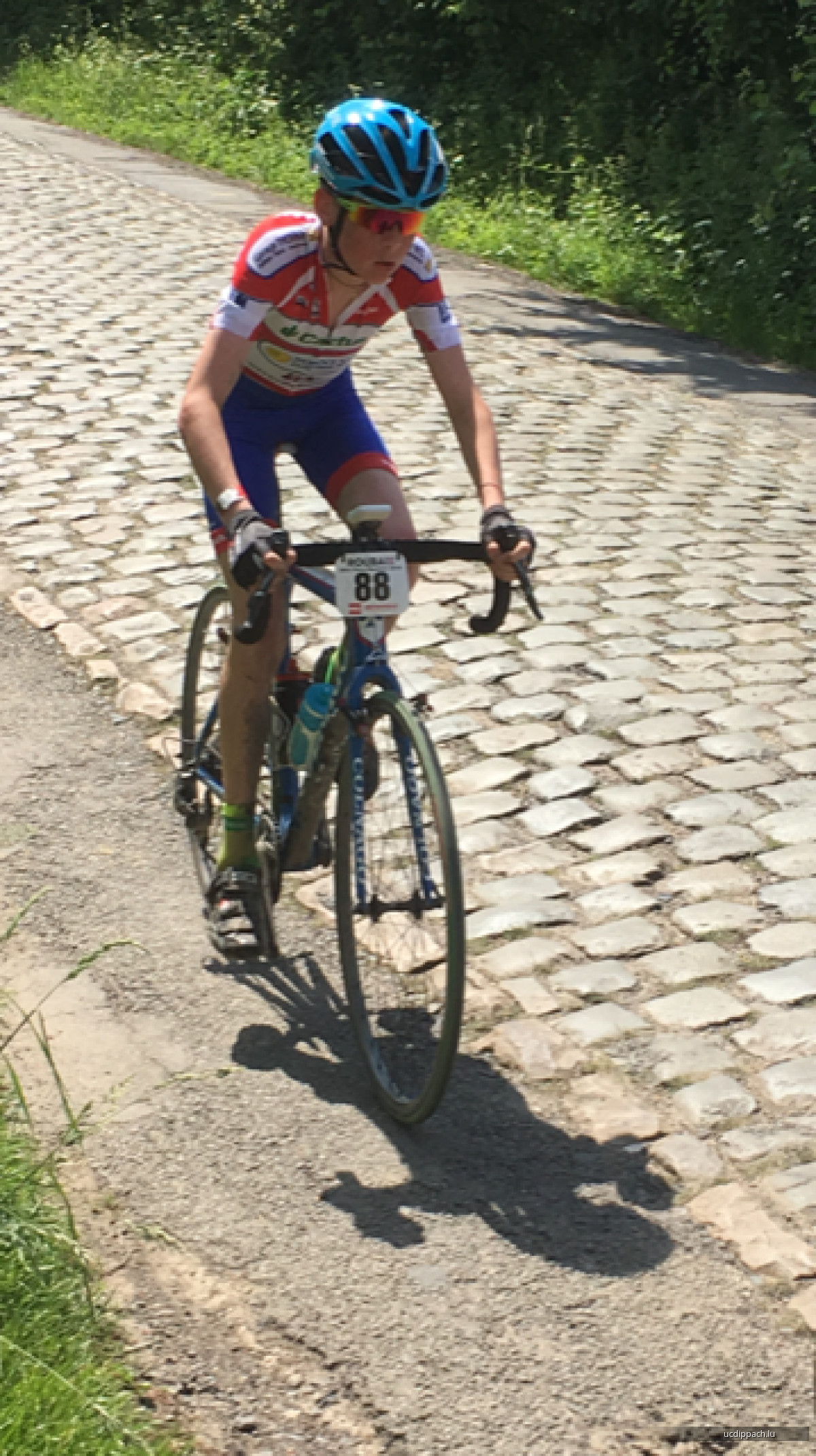 Mini Paris Roubaix