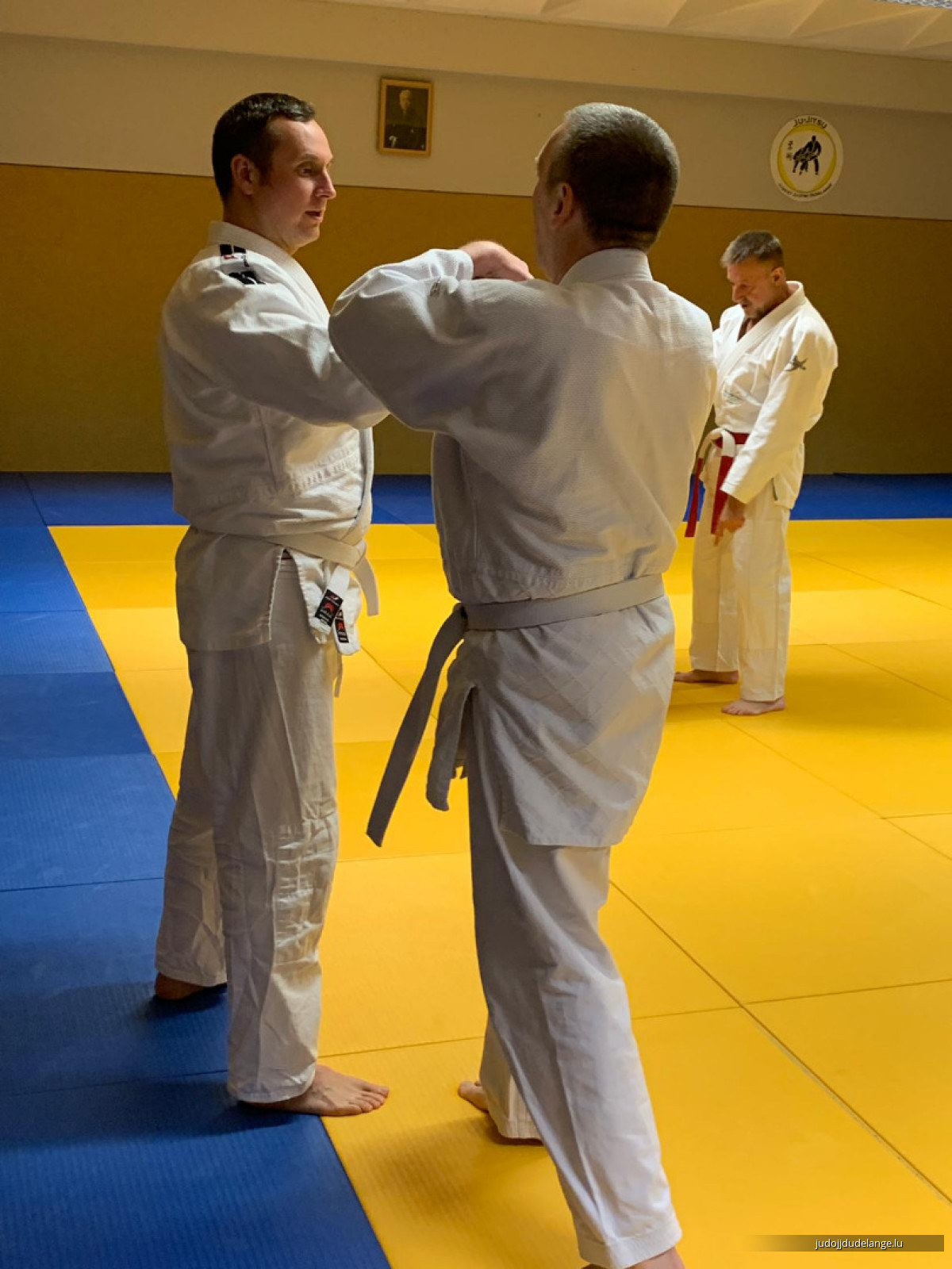 Jiu-Jitsu-Seminar mit Shihan Thorsten Deckert, 14.12.2018