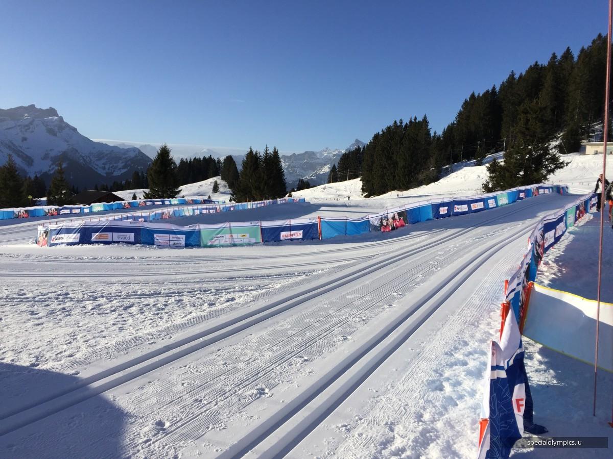 Snowshoeing Villars sur Ollon 2020