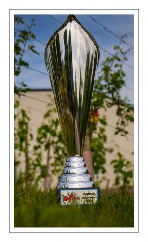 LaLuxLadies Cup 2014