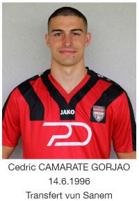 Camarate_Cedricca75d.jpg