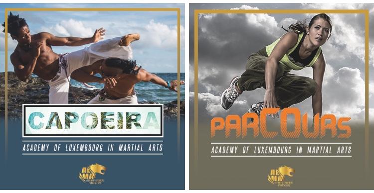 Les nouveaux cours Capoeira & Parkour commencent dès le 13/01/2018 :)