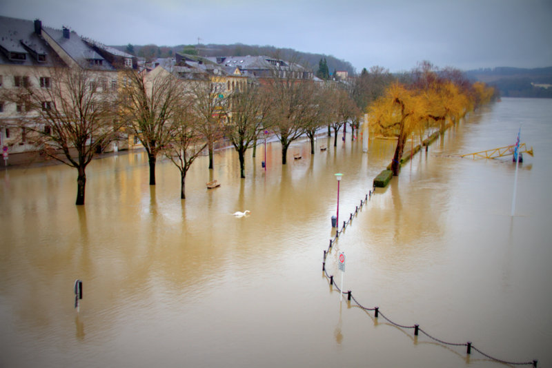 Flooding /!\