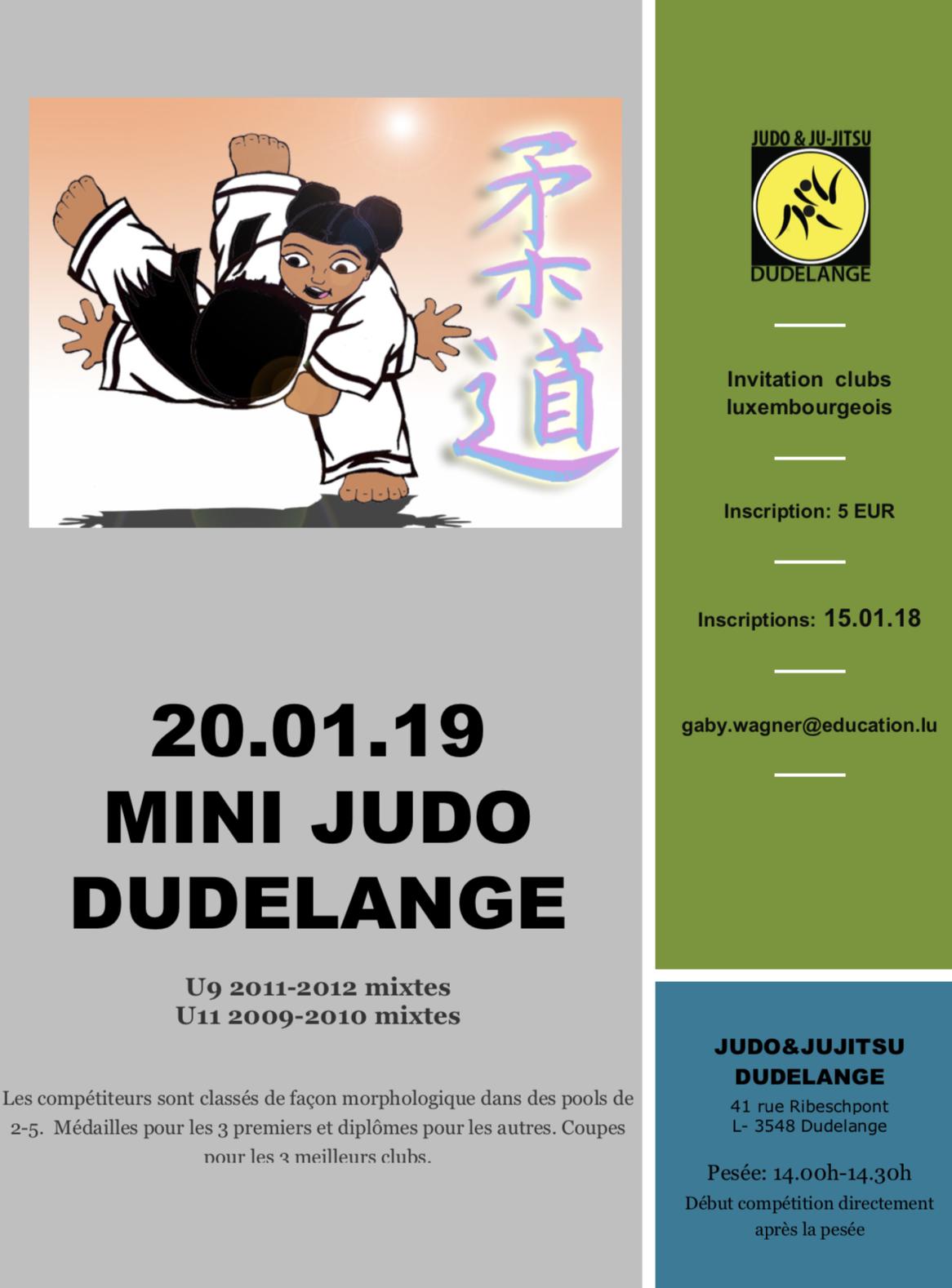 Tournoi 'Mini-Judo' 2019