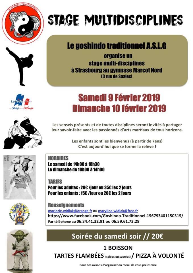Stage Multidisciplines à Strasbourg 9 & 10 Février