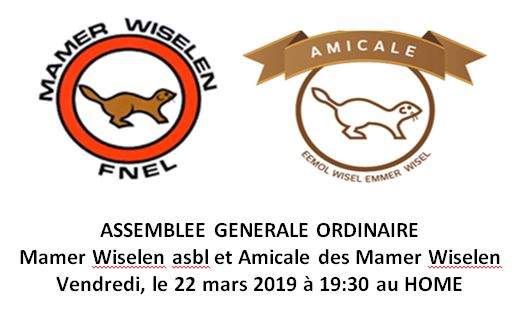 ASSEMBLEE GENERALE MAMER WISELEN & AMICALE