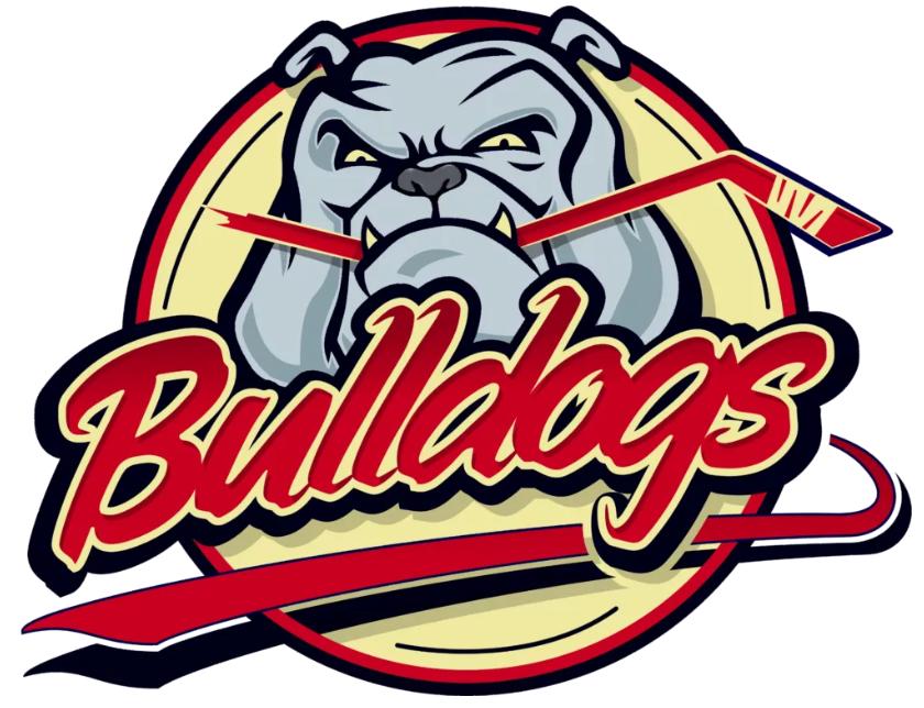 L'équipe BeNe League 2019-2020