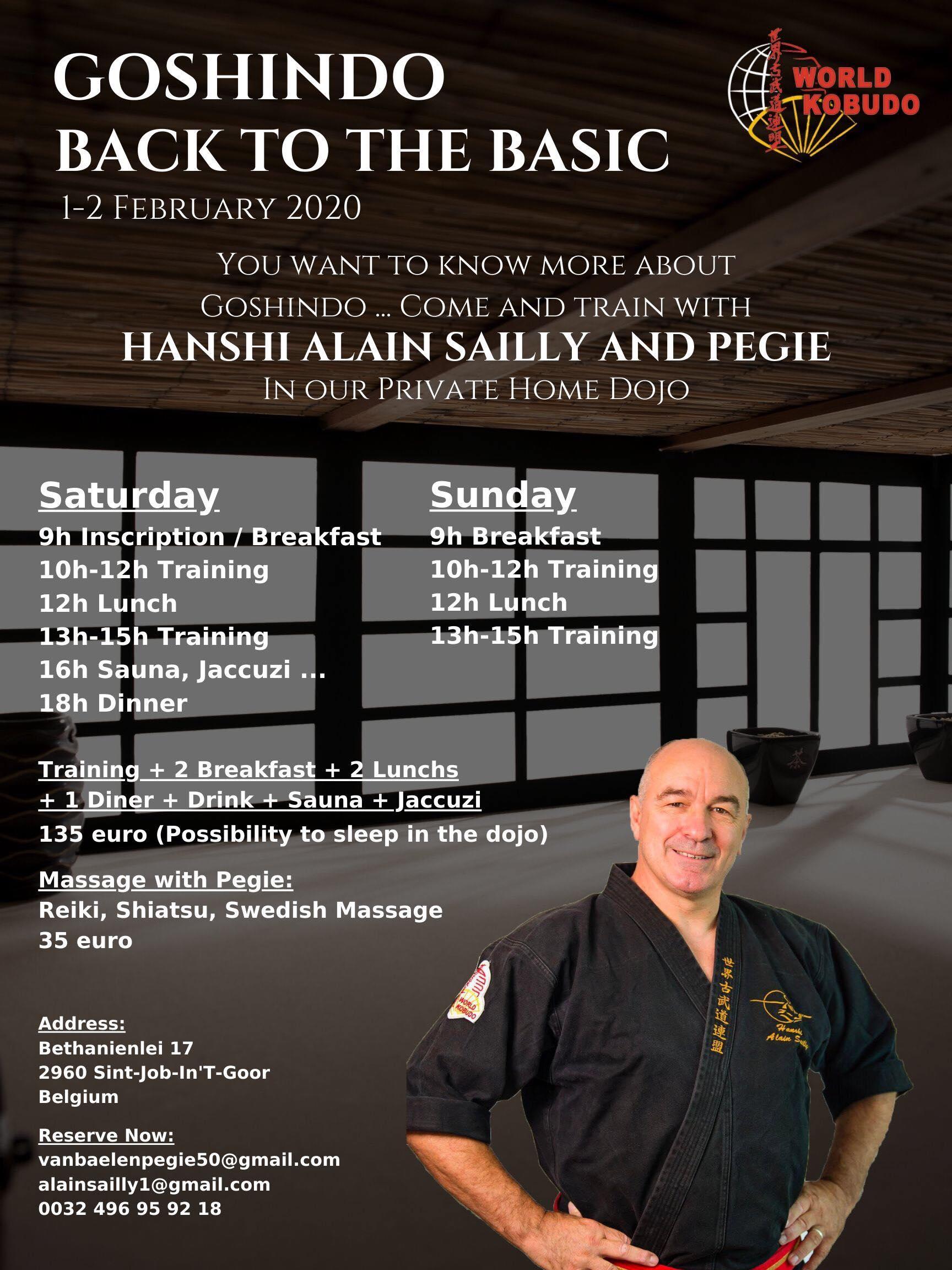 Stage Goshindo avec Alain SAILLY le 1 et 2 février 2020