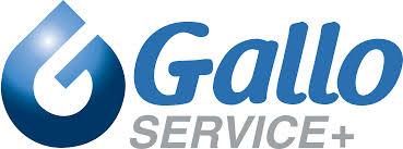 Nouveau sponsor pour les Bulldogs de Liège - GALLO SERVICE +