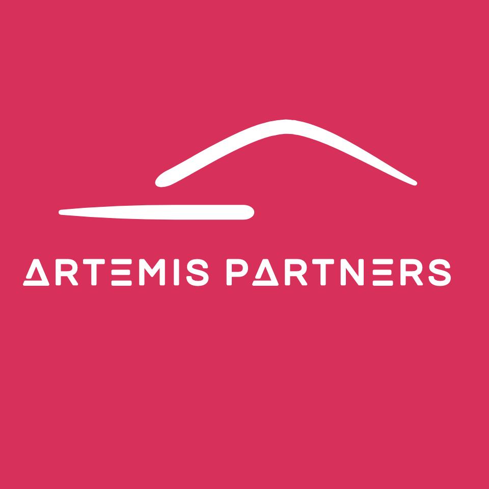 Nouveau sponsor pour les Bulldogs de Liège - ARTEMIS PARTNERS