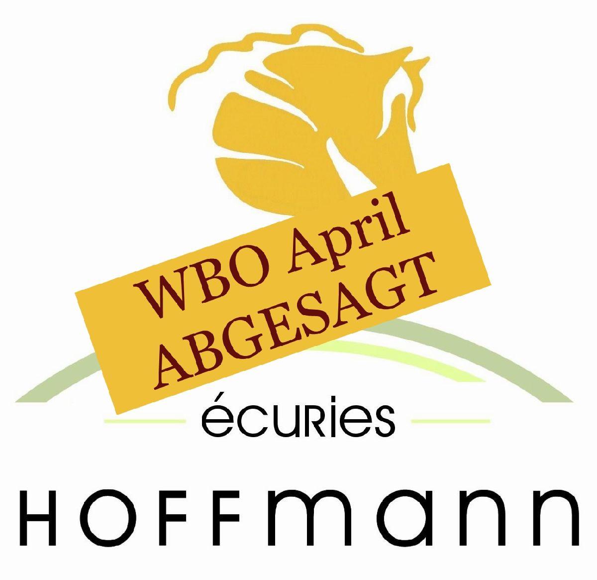 ABGESAGT - WBO Turnier in Dudelange