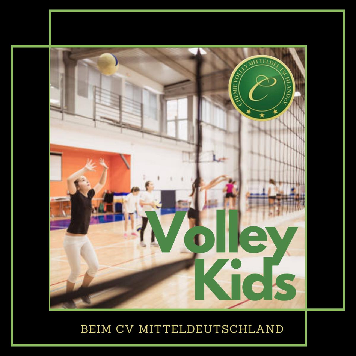 +++Volley Kids gesucht+++