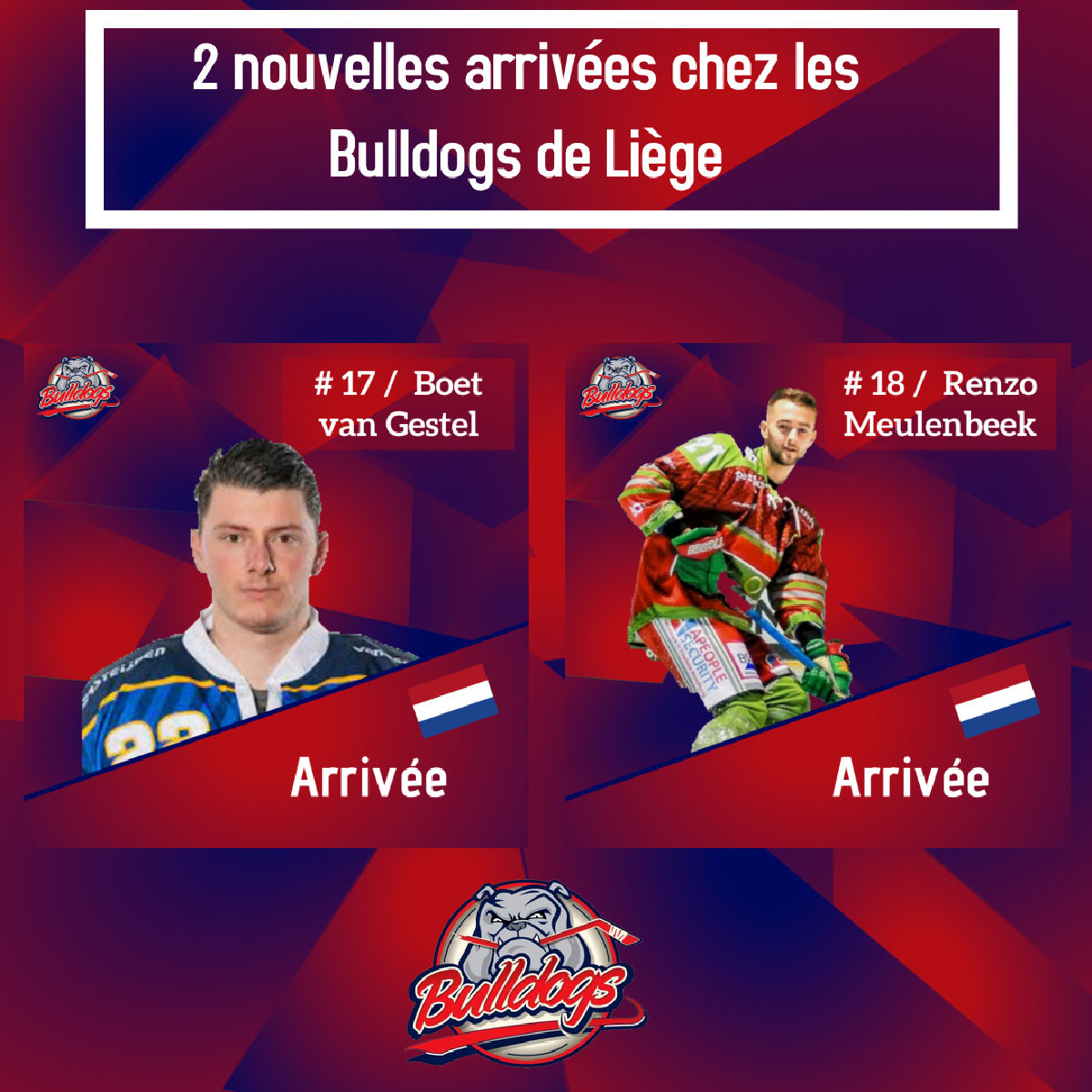 Infos transferts - 2 nouvelles arrivées chez les Bulldogs de Liège