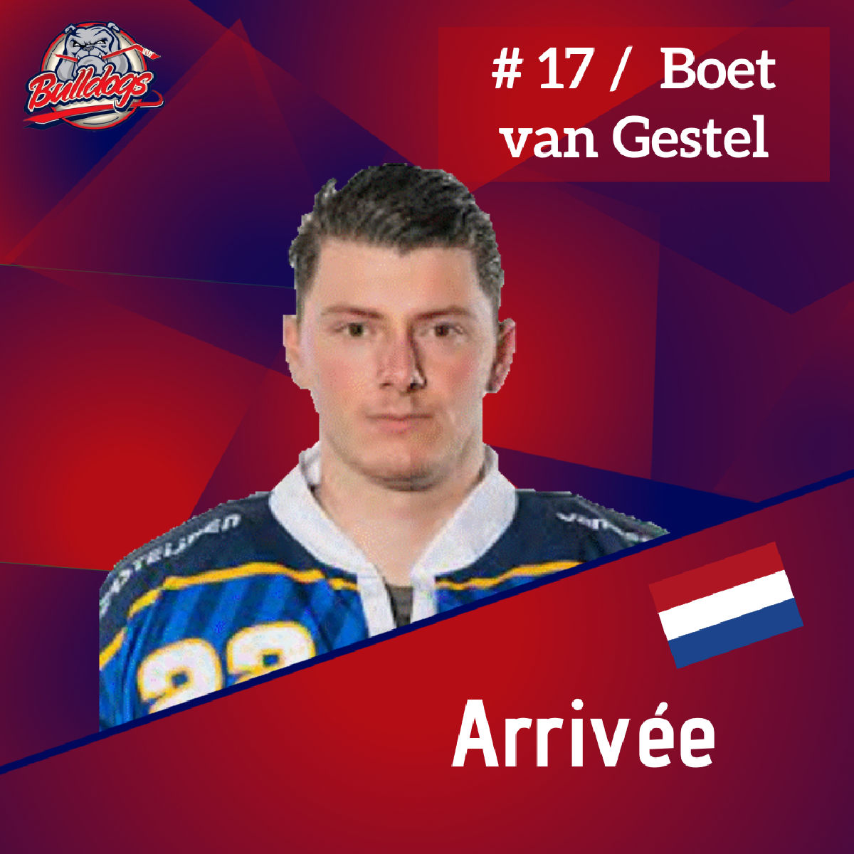 Présentation de Boet van Gestel nouveau défenseur des Bulldogs de Liège