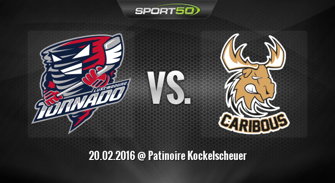 Preview: Tornado Luxembourg takes on Dammarie Caribous