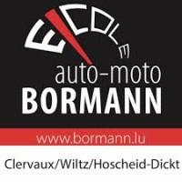 Bormann Fahrschule