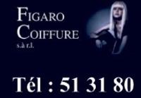 Figaro Coiffure Sàrl