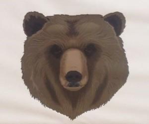 Baumholder Bears (USA)  (Senior) (M)
