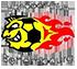 Handball Esch (Senior F)