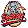 Bulldogs Liège (Senior M)