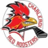 Charleroi Red Roosters 1 (U12 M/F)