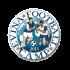 Evina Football Camp  (Senior) (M)