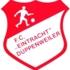 FC Eintracht Düppenweiler 1 (Senior M)