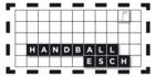 Handball Esch / HC Schifflange