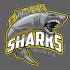 Mechelen Golden Sharks 1 (Senior M)