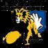 TSV Handschuhsheim 1886 1 (Senior M)