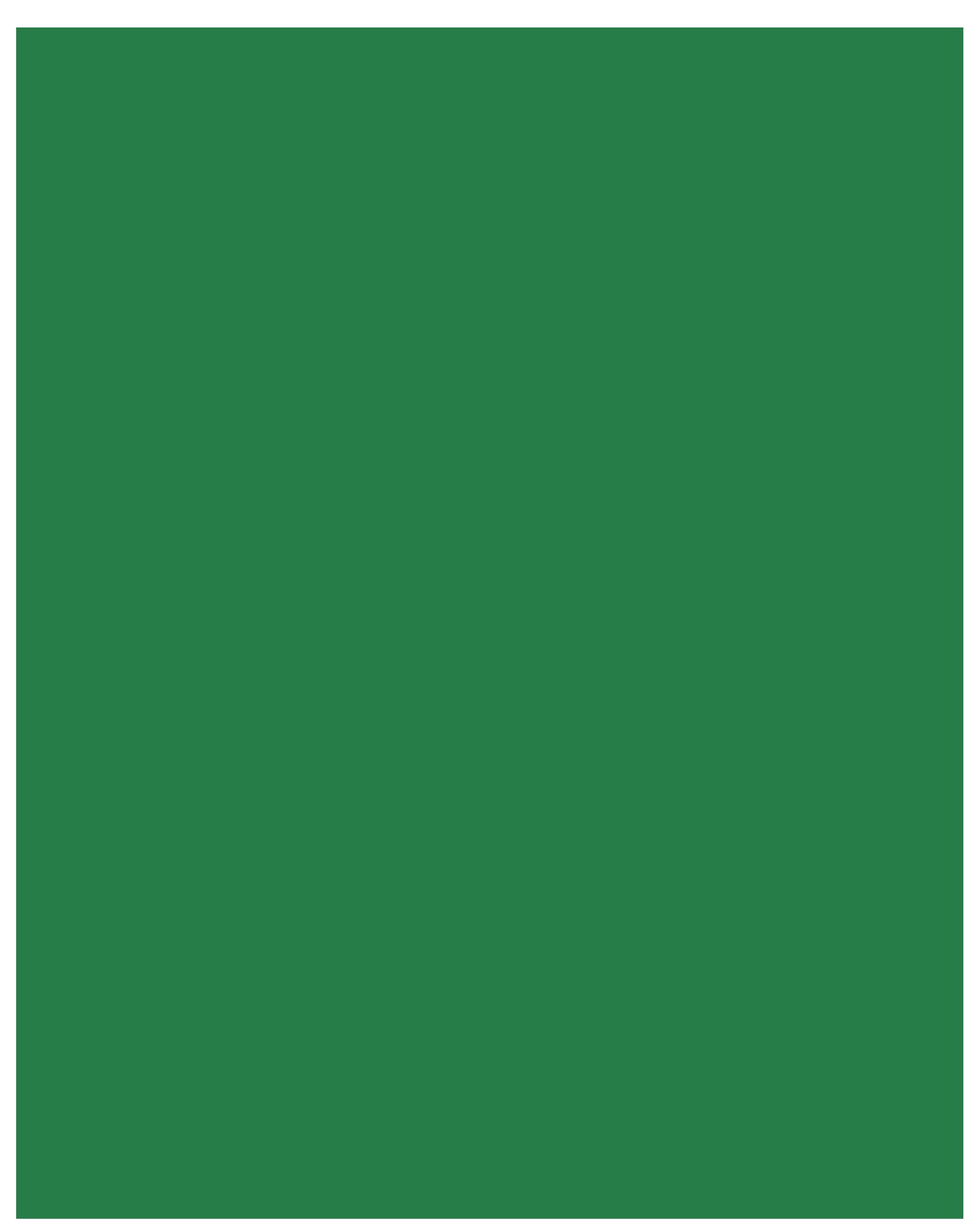 VfR 06 Neuss II 2 (Senior M)